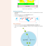 mikrobiyoloji-4